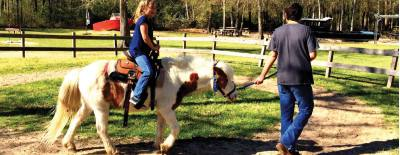 Children can ride horses and interact with a variety of farm animals at 7 Acre Wood.