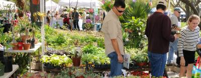 The 60th annual Zilker Garden Festival takes place Saturday and Sunday.