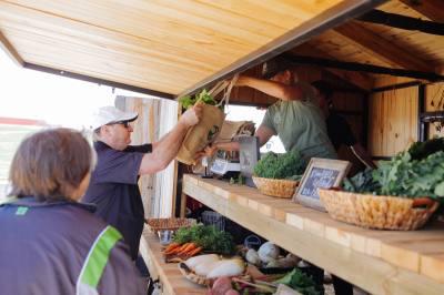 Harvest Green development opens weekly farmers market in Richmond