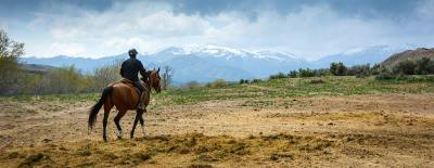 The Endurance Riding Convention will be held this weekend, March 10-11, in Grapevine.