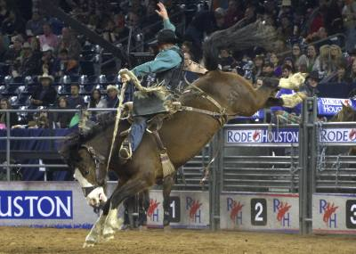 In addition to the Houston Livestock Show and Rodeo, several festivals, performances and service opportunities are scheduled for this weekend throughout the Greater Houston area.