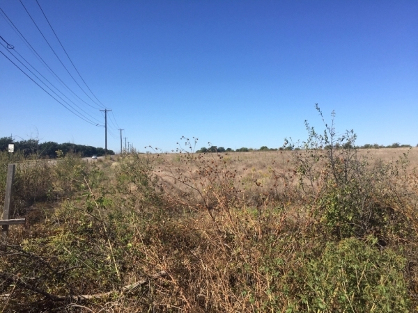 150 condos, commercial development, single family and more are planned for 86 acres near A.W. Grimes Boulevard and Old Settlers Boulevard in Round Rock. (Taylor Jackson Buchanan/Community Impact Newspaper)