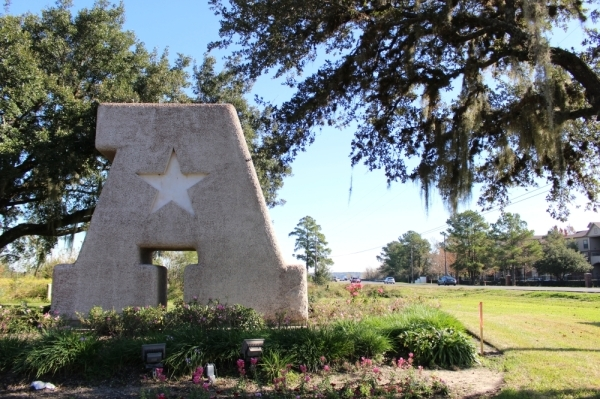 Atascocita is located east of the city of Humble and south of Kingwood. (Kelly Schafler/Community Impact Newspaper)