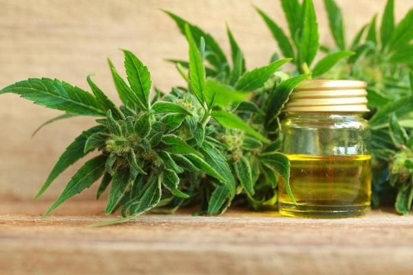 CBD oil adobe stock