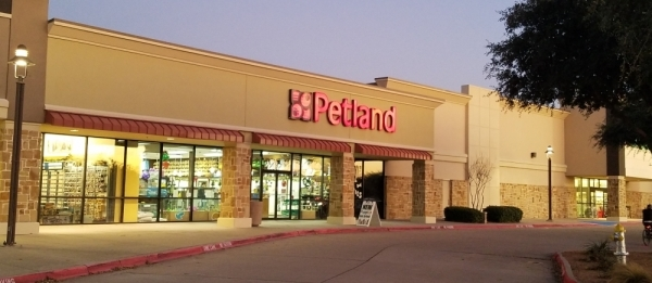 Petland has been in Frisco for more than 15 years. (Lindsey Juarez Monsivais/Community Impact Newspaper)