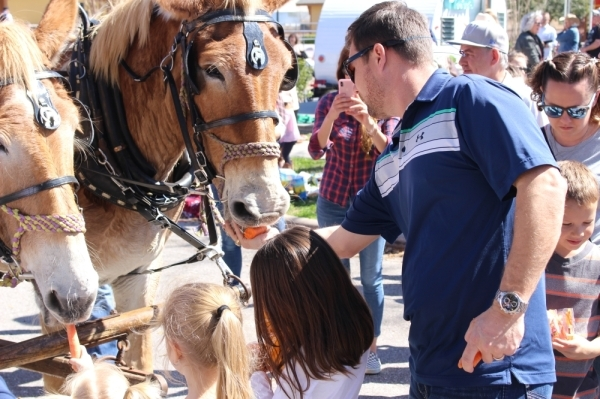 The Sam Houston Trail Riders rode into downtown Tomball from Montgomery on Feb. 25. (Photos by Dylan Sherman/Community Impact Newspaper)