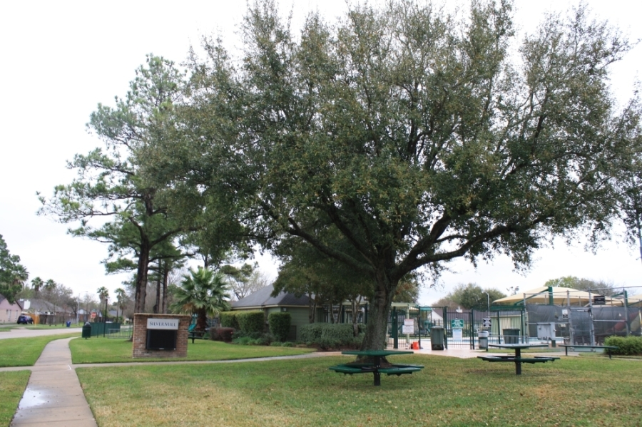 Silvermill offers a variety of community amenities to its residents: •two tennis courts •pool with slides •park with a playground and swings •clubhouse •easy access to Mayde Creek North Hike and Bike Trail and Mayde Creek MUD North Park (Jen Para/Community Impact Newspaper)