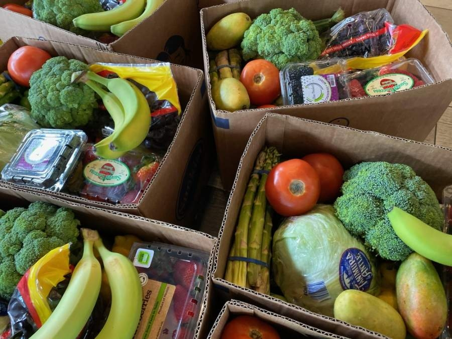 Fresh Harvest Produce Delivery is selling large boxes of fruit, vegetables or a mixture of the two for a flat fee that includes delivery. (Courtesy Fresh Harvest Produce Delivery)