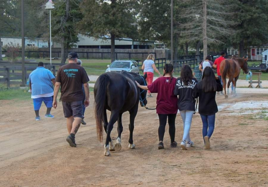 Inspiration Ranch offers equine therapy sessions through video conference or through following social distancing guidelines at its ranch. (Courtesy Inspiration Ranch)