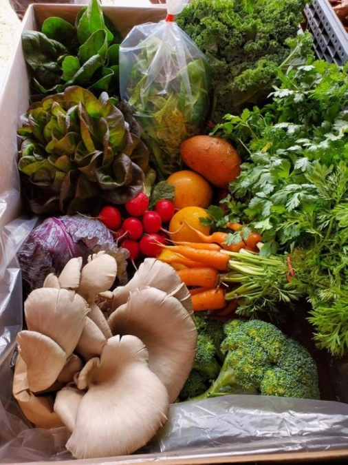 Verdegreens Farms now offers $45 Farmboxes with produce from neighboring local farms including Lone Star Mushrooms and Atkinson Farms with pickup available at six Greater Houston area locations. (Courtesy Verdegreens Farms)
