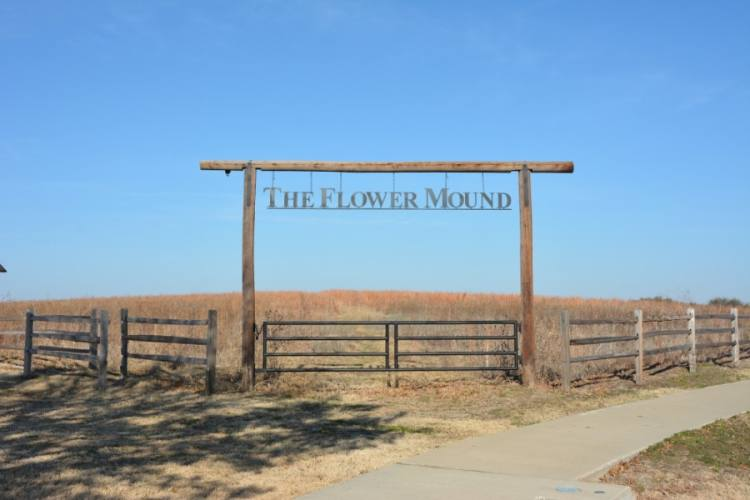 In May, sales tax revenue for Flower Mound came back better than expected, beating the 13% expected decrease with a roughly 6% decrease. (Brian Pardue/Community Impact Newspaper)