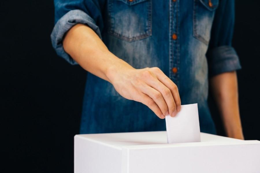 vote, ballot, election