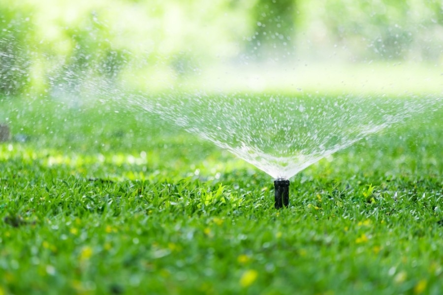 Lawns may only be watered twice per week on days designated by the city. (Courtesy Fotolia)
