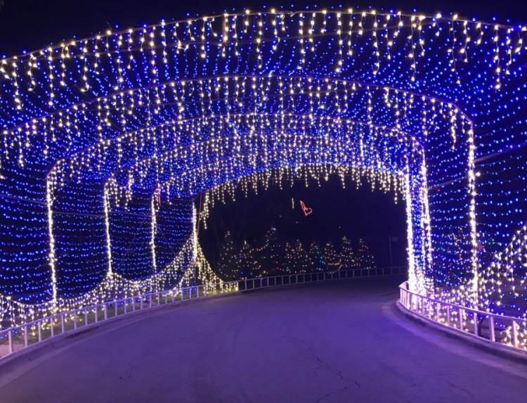 A drive-thru Trail of Lights could serve 1,300 vehicles per night this December. (Nicholas Cicale/Community Impact Newspaper)