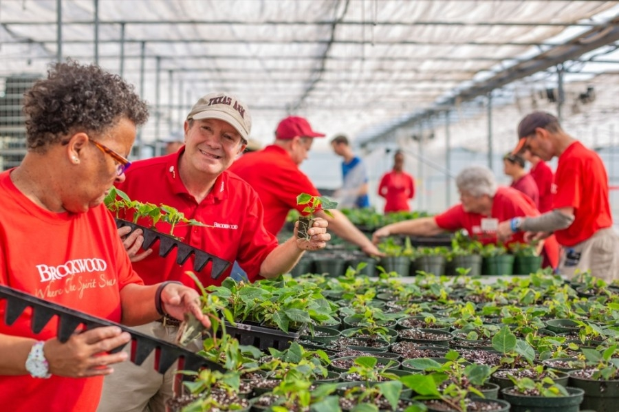 Citizens work at 47 on-campus greenhouses. (Courtesy The Brookwood Community)