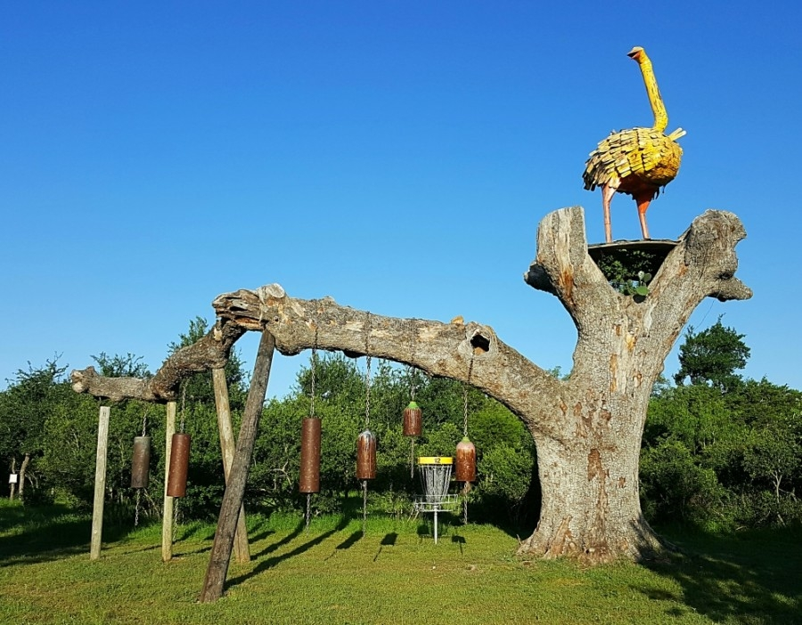 The Flying Armadillo opened in 2015 and is one of three unique minigolf courses in Hays County. (Courtesy Michael Lambert)