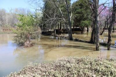 Williamson County saw several inches of rain March 27-28. (Wendy Sturges/Community Impact Newspaper)