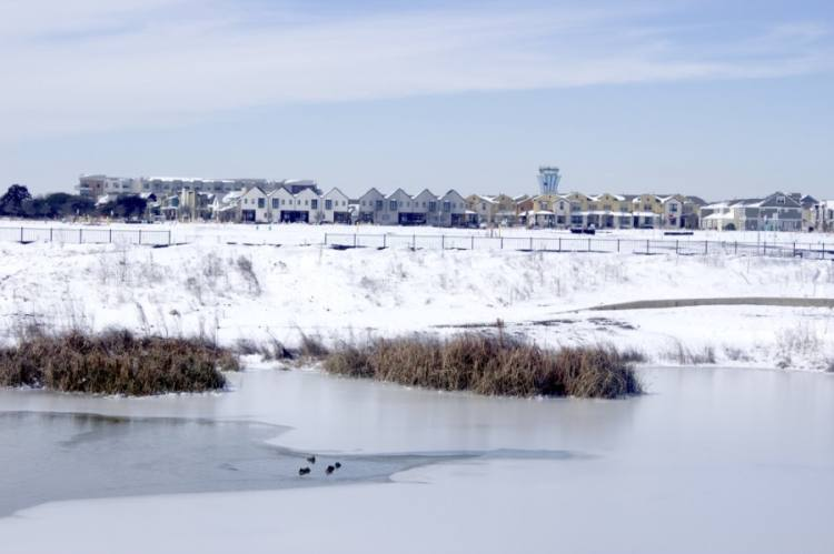 Snow and ice cover the pond on the southeastern side of the Mueller development in East Austin in February. (Jack Flagler/Community Impact Newspaper)