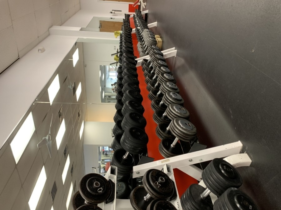 Georgetown Fitness provides a training environment to help improve health, strength and physique. (Courtesy Georgetown Fitness)
