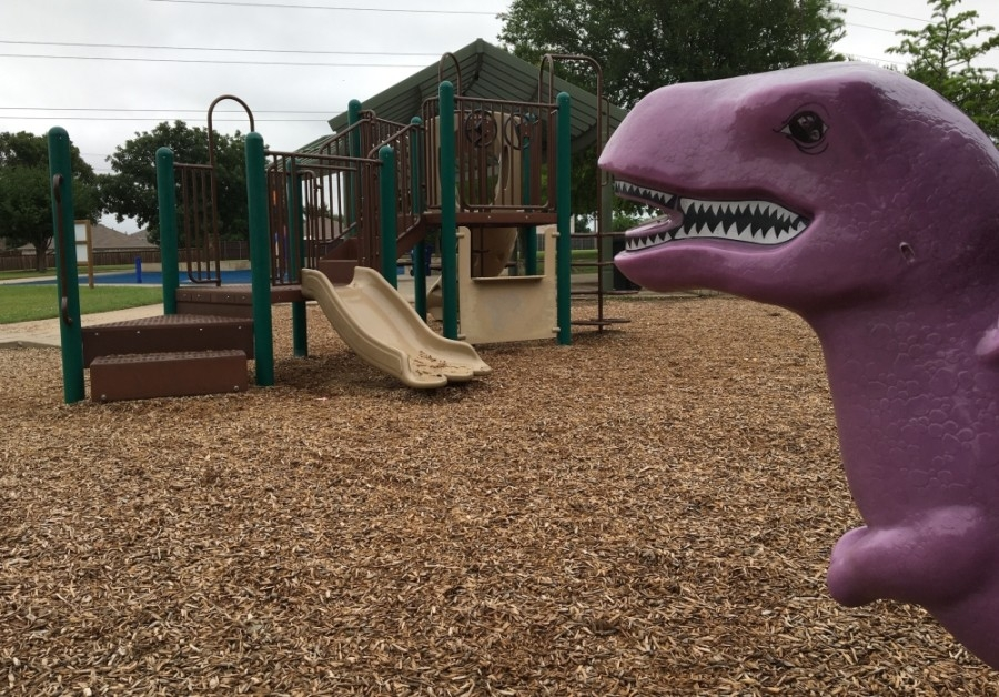 playground slide and dinosaur rocker