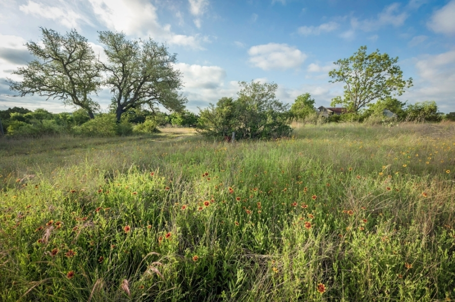 The Barton Creek Habitat Preserve encompasses more than 4,000 acres in western Austin. (Courtesy Pierce Ingram for The Nature Conservancy)