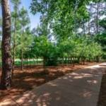 A new 3-mile trail in Spring Creek Greenway will run from Rothwood Park to Springwood Village's 150-acre nature preserve. (Courtesy of Springwood Village)