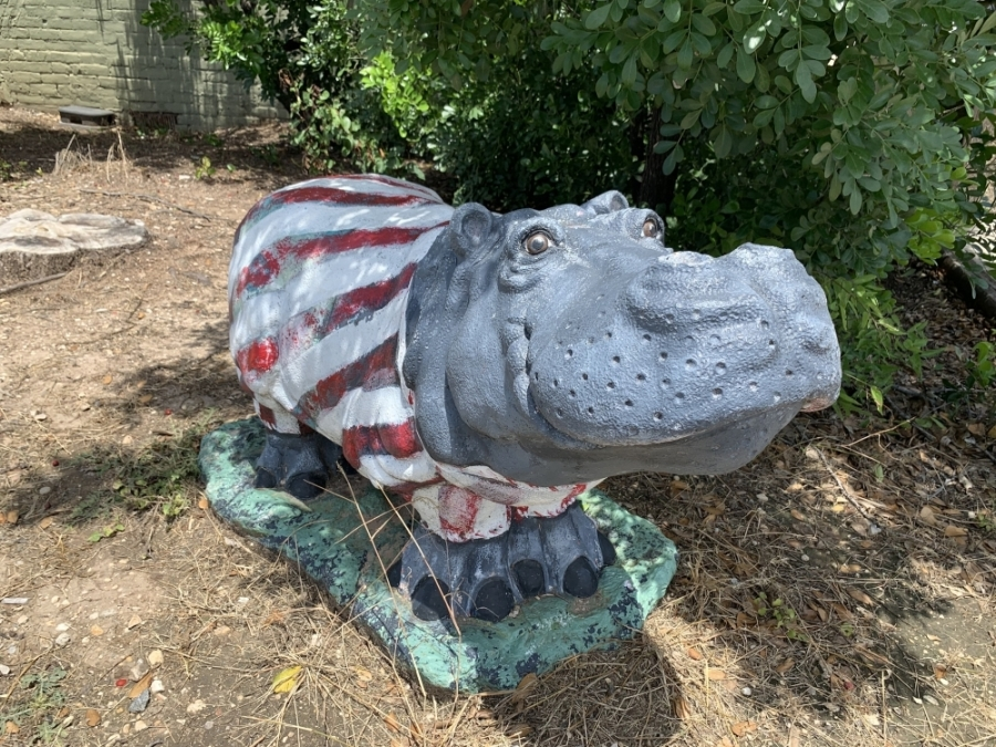 Decorated hippos can be seen outside businesses throughout the city of Hutto. (Megan Cardona/Community Impact Newspaper)