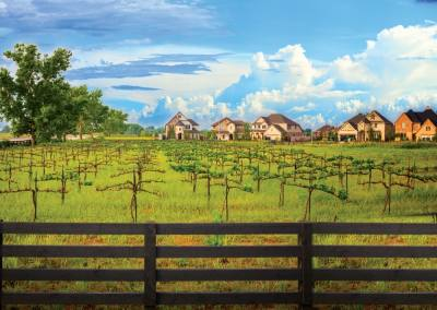 The community features a 12-acre farm with an orchard, a greenhouse, homes for goats and chickens, seasonal produce sold on-site each Saturday and a vineyard managed by Messina Hof. (Courtesy Harvest Green)