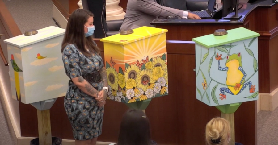 The boxes, which feature uplifting designs such as flowers and frogs, will be placed throughout the city, located next to positive messages embellishing the sidewalks. (Screenshot courtesy city of Sugar Land)
