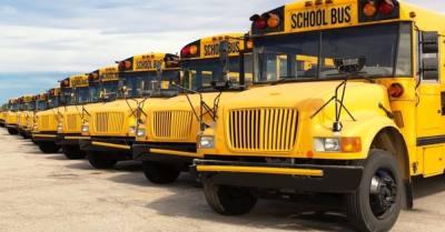 school buses in row