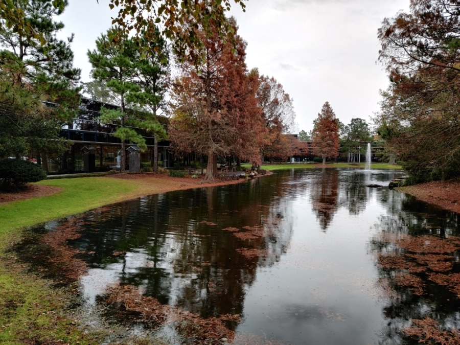 The Woodlands Township reported no damage to township properties, and no significant events occurred in The Woodlands due to Tropical Storm Nicholas. (Ben Thompson/Community Impact Newspaper)