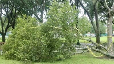 Stevenson Park in Friendswood was scattered with branches, leaves and other vegetation debris following the landfall of Hurricane Nicholas. (Andy Yanez/Community Impact Newspaper)