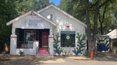 Photo of a plant store