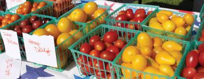 Wild Turkey Farm in Manvel has a booth at the Pearland Old Townsite Farmers Market that offers a variety of fresh vegetables.