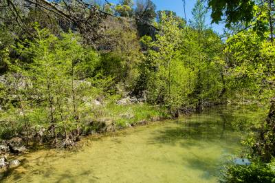 The city of Austin released its annual State of Our Environment report on Thursday.