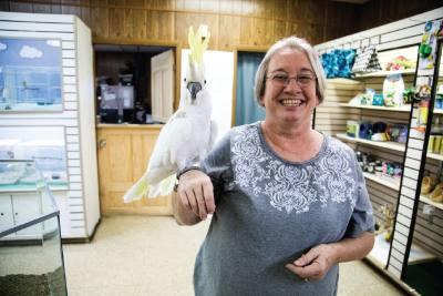 Gallery of Pets owner Glenda Bone has a pet cockatoo.