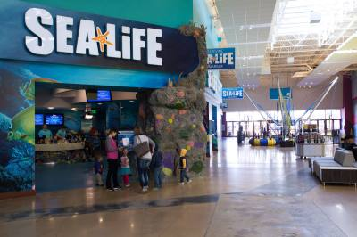 Sea Life will offer free admission to first responders and military service members in January.