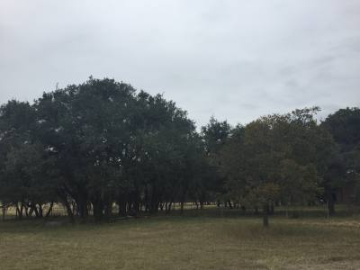 Leander City Council will consider buying additional land for the future park on US 183 at its Nov. 16 meeting.
