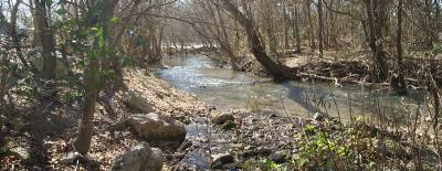 The San Marcos River Foundation received about 31 acres of land around Stokes Park and Cape's Dam for preservation.