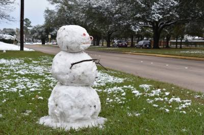 Staff at Kickerillo-Mischer Preserve built a snowman using snow from the facility's parking lot.