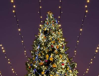 Leander and Cedar Park residents have several opportunities to recycle their Christmas trees.