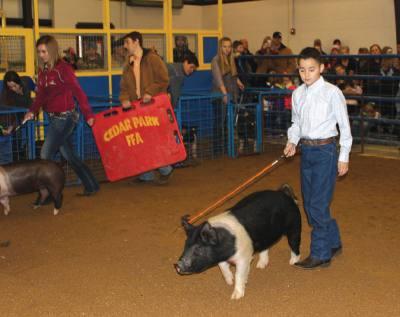 Leander ISD FFA members auction livestock this weekend.