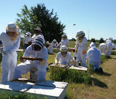 Experienced or beginner beekeepers can learn from experts at the 7th Annual Beekeeper Seminar.