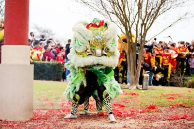 Dragon Dancers perform at the Chinatown Center's Lunar New Year Celebration