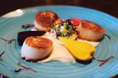 Diver Sea Scallops ($29): three scallops over cauliflower puree served with baby beets
