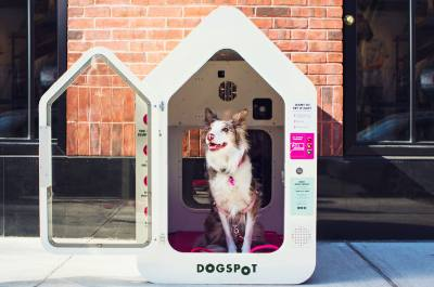 Hill Country Galleria is the first location in Texas to provide DogSpot dog houses.