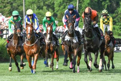 The 78th annual Iroquois Steeplechase, to be held May 11, has something for everyone.
