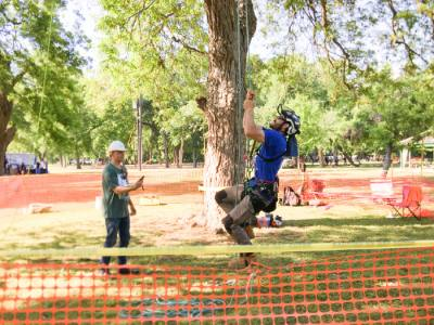 The Texas Tree Climbing Championship from May 16-18 includes tree giveaways, tree care andnlandscaping talks and demonstrations, and facenpainting.n