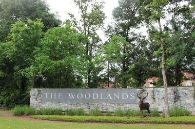 Visit the Woodlands plans events to celebrate tourism with an event May 4.